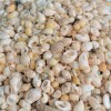 Melci mici galbui 200 gr